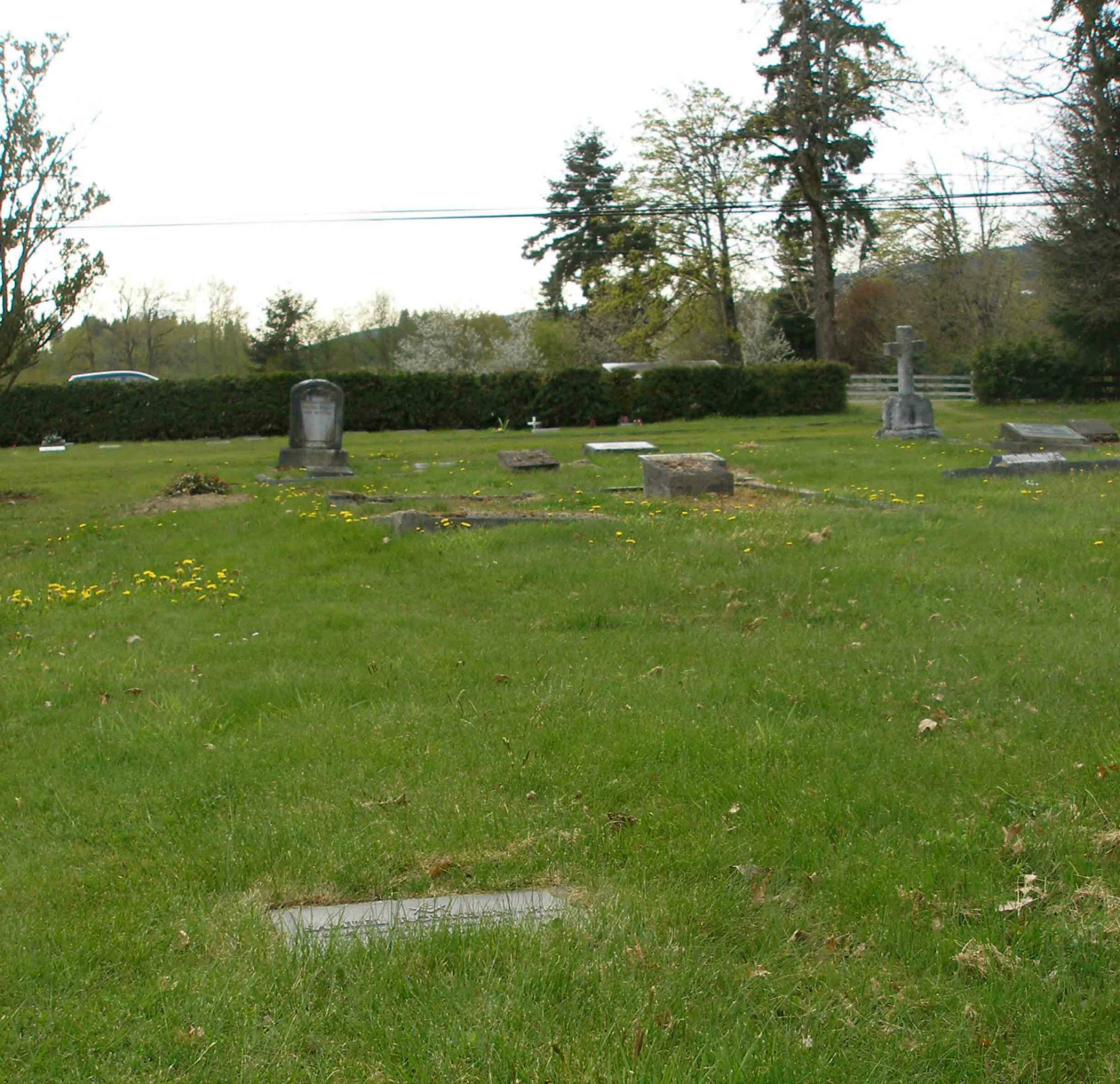 Samuel Robinson grave, St. Mary's Somenos Anglican cemetery, Somenos Road, North Cowichan